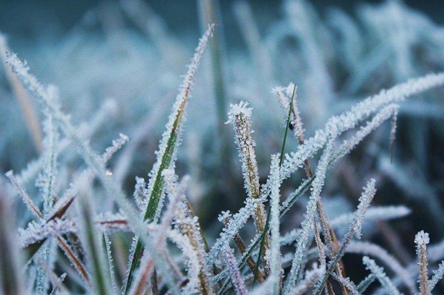 С 23 сентября в Украине начинаются заморозки — синоптики ...